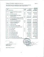Báo cáo KQKD quý 2 năm 2010 - Công ty Cổ phần Hoàng Anh Gia Lai