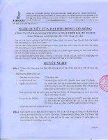 Nghị quyết Đại hội cổ đông bất thường - Công ty Cổ phần Ngoại thương và Phát triển Đầu tư Thành phố Hồ Chí Minh