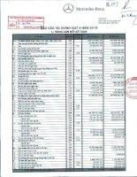 Báo cáo tài chính công ty mẹ quý 3 năm 2010 - Công ty Cổ phần Dịch vụ Ô tô Hàng Xanh