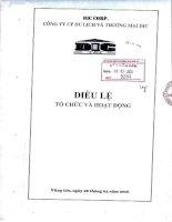Bản điều lệ - CTCP Du lịch và Thương mại DIC