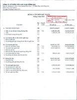 Báo cáo tài chính quý 3 năm 2010 - Công ty Cổ phần Tấm lợp Vật liệu xây dựng Đồng Nai