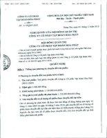 Nghị quyết Hội đồng Quản trị ngày 03-11-2010 - Công ty cổ phần Tập đoàn Hòa Phát