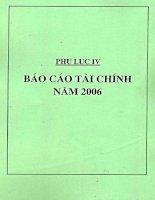 Báo cáo tài chính năm 2006 (đã kiểm toán) - Công ty cổ phần Tập đoàn Hòa Phát