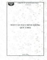 Báo cáo tài chính công ty mẹ quý 1 năm 2016 - Công ty cổ phần Tập đoàn Hòa Phát