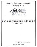 Báo cáo tài chính hợp nhất quý 2 năm 2013 - Công ty Cổ phần Phát triển nhà Bà Rịa-Vũng Tàu