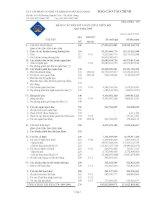 Báo cáo tài chính quý 4 năm 2009 - Công ty cổ phần Cơ khí và Khoáng sản Hà Giang