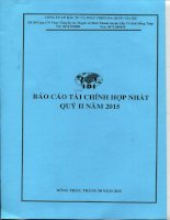 Báo cáo tài chính hợp nhất quý 2 năm 2015 - Công ty Cổ phần Đầu tư và Phát triển Đa Quốc Gia I.D.I