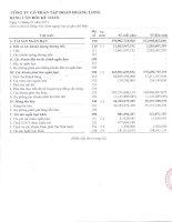Báo cáo tài chính công ty mẹ quý 1 năm 2012 - Công ty Cổ phần Tập đoàn Hoàng Long