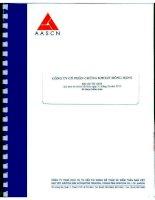 Báo cáo tài chính năm 2010 (đã kiểm toán) - Công ty Cổ phần Chứng khoán Hưng Thịnh