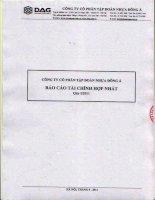 Báo cáo tài chính hợp nhất quý 1 năm 2011 - Công ty Cổ phần Tập đoàn Nhựa Đông Á
