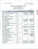Báo cáo tài chính quý 1 năm 2012 - Công ty Cổ phần Đông Hải Bến Tre