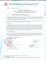 Báo cáo tài chính năm 2011 (đã kiểm toán) - Công ty cổ phần Đầu tư Phát triển nhà và Đô thị HUD 6
