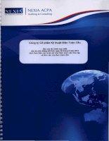 Báo cáo tài chính hợp nhất quý 2 năm 2012 (đã soát xét) - Công ty cổ phần Kỹ thuật điện Toàn Cầu