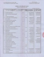 Báo cáo tài chính công ty mẹ quý 2 năm 2012 - Công ty Cổ phần Thương mại Hóc Môn