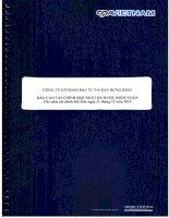 Báo cáo tài chính hợp nhất năm 2012 (đã kiểm toán) - Công ty Cổ phần Đầu tư và Xây dựng HUD1