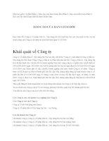 Báo cáo tài chính năm 2009 (đã kiểm toán) - Công ty Cổ phần Đầu tư - Xây dựng Hà Nội