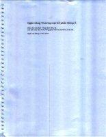 Báo cáo tài chính công ty mẹ quý 2 năm 2013 (đã soát xét) - Ngân hàng Thương mại cổ phần Đông Á