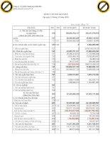 Báo cáo tài chính quý 4 năm 2010 - Công ty Cổ phần Bánh kẹo Hải Hà