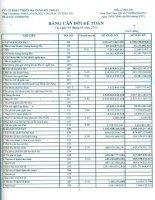Báo cáo tài chính công ty mẹ quý 2 năm 2013 - Công ty Cổ phần Phát triển Hạ tầng Kỹ thuật