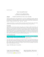Báo cáo tài chính hợp nhất năm 2007 (đã kiểm toán) - Công ty Cổ phần Hùng Vương