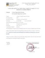 Báo cáo thường niên năm 2014 - Công ty cổ phần Everpia Việt Nam