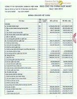 Báo cáo tài chính hợp nhất quý 1 năm 2013 - Công ty Cổ phần Tập đoàn Dabaco Việt Nam