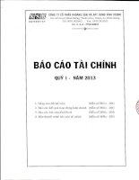 Báo cáo tài chính quý 1 năm 2013 - Công ty Cổ phần Khoáng sản và Xây dựng Bình Dương