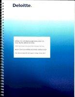 Báo cáo tài chính năm 2013 (đã kiểm toán) - Công ty Cổ phần Khoáng sản và Xây dựng Bình Dương