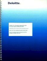Báo cáo tài chính quý 2 năm 2014 (đã soát xét) - Công ty Cổ phần Khoáng sản và Xây dựng Bình Dương