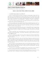 Báo cáo thường niên năm 2008 - Công ty Cổ phần Chế biến Gỗ Thuận An