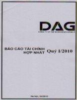 Báo cáo tài chính hợp nhất quý 1 năm 2010 - Công ty Cổ phần Tập đoàn Nhựa Đông Á