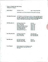 Báo cáo tài chính hợp nhất quý 1 năm 2011 - Công ty Cổ phần Dược Hậu Giang