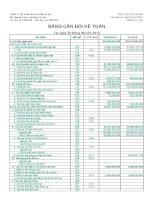 Báo cáo tài chính quý 2 năm 2010 - Công ty Cổ phần Dược phẩm Hà Tây