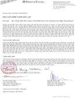 Báo cáo tài chính công ty mẹ năm 2009 (đã kiểm toán) - Công ty Cổ phần Máy - Thiết bị Dầu khí Đà Nẵng