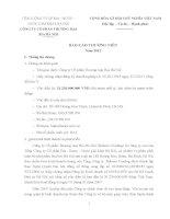 Báo cáo thường niên năm 2012 - Công ty Cổ phần Thương mại Bia Hà Nội