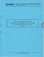 Báo cáo tài chính hợp nhất năm 2014 - Công ty Cổ phần Tập đoàn Nhựa Đông Á