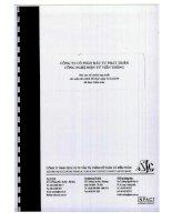 Báo cáo tài chính hợp nhất năm 2010 (đã kiểm toán) - Công ty Cổ phần Đầu tư Phát triển Công nghệ Điện tử Viễn thông