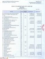 Báo cáo tài chính quý 4 năm 2013 - Công ty Cổ phần Bia Hà Nội - Hải Dương
