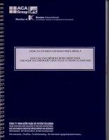 Báo cáo tài chính công ty mẹ năm 2010 (đã kiểm toán) - Công ty Cổ phần Tập đoàn Nhựa Đông Á