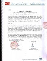 Báo cáo tài chính năm 2009 (đã kiểm toán) - Công ty Cổ phần Chứng khoán FPT