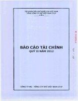 Báo cáo tài chính công ty mẹ quý 2 năm 2012 - Tổng Công ty Khí Việt Nam-CTCP