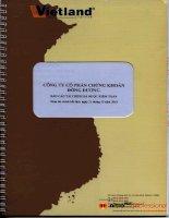 Báo cáo tài chính năm 2010 (đã kiểm toán) - Công ty Cổ phần Chứng khoán Đông Dương