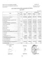 Báo cáo KQKD quý 1 năm 2013 - Công ty Cổ phần Đầu tư phát triển hạ tầng IDICO