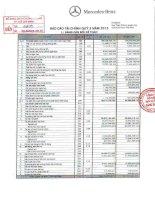 Báo cáo tài chính công ty mẹ quý 3 năm 2013 - Công ty Cổ phần Dịch vụ Ô tô Hàng Xanh