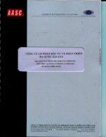 Báo cáo tài chính năm 2012 (đã kiểm toán) - Công ty Cổ phần Đầu tư và Phát triển Đa Quốc Gia I.D.I