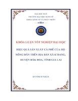 Hiệu quả sản xuất cà phê của hộ nông dân trên địa bàn xã konggang, huyện đak đoa, tỉnh gia lai