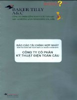 Báo cáo tài chính hợp nhất năm 2015 (đã kiểm toán) - Công ty cổ phần Kỹ thuật điện Toàn Cầu
