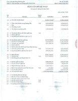 Báo cáo tài chính quý 1 năm 2013 - Công ty Cổ phần Hàng hải Đông Đô