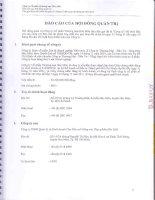 Báo cáo tài chính hợp nhất quý 2 năm 2012 (đã soát xét) - Công ty Cổ phần Thương mại Hóc Môn