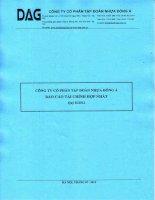 Báo cáo tài chính hợp nhất quý 2 năm 2012 - Công ty Cổ phần Tập đoàn Nhựa Đông Á